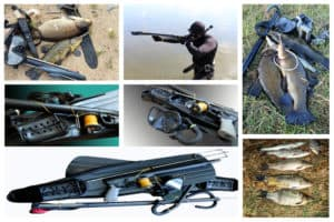 Guide to spearfishing
