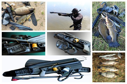 best spearfishing gear