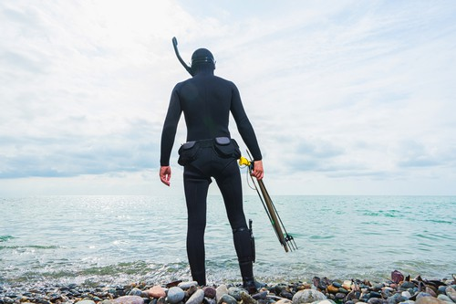 Snorkling sets for spearfishing