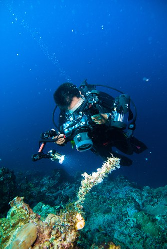 Looking for the best underwater fishing camera?