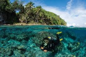 The Visayas, Philippines diving