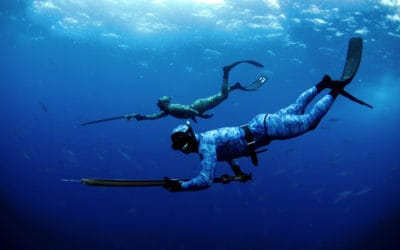 A Comprehensive Guide to the Best Spearfishing Gear Packages