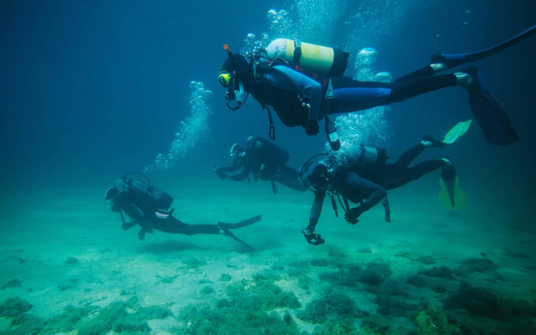 The Right Diving Wetsuit For You